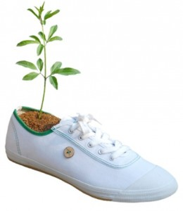 collection-printemps-ete-faguo-chaussures-ecologie-arbre